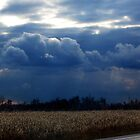 Corn Fields and Storms by George Cousins