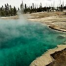 Black Pool - West Thumb Basin - Yellowstone National Park by Stephen Beattie