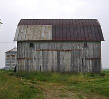Barn in  Randolph County  by mltrue