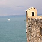 Antibes Fort Carr watch tower over the  sea (France) by mikequigley