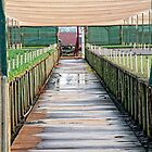 Wet path into greenhouse by Andy Bulka