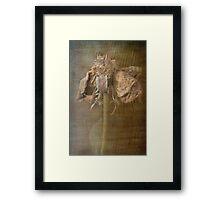 Rust 'n Roses ~ #3 Framed Print