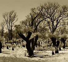 Black Boys - Fremantle - Western Australia by Paul Fulwood