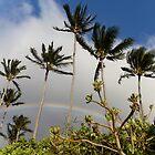 Hawaiian Tropic by Milton Gan