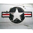 USAF insignia on A4D Skyhawk by PETER CULLEY