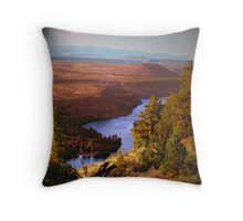 Last Look of a Timeless View Throw Pillow