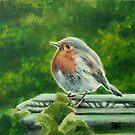 Chelsea Robin by Alice McMahon