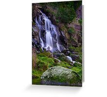 """Falling By The Mill"" Greeting Card"