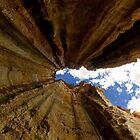 Falling Upwards by Travis Easton