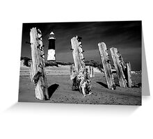 Lighthouse and Groynes at Spurn Point Greeting Card