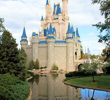 Cinderella's Castle by Dan Shiels