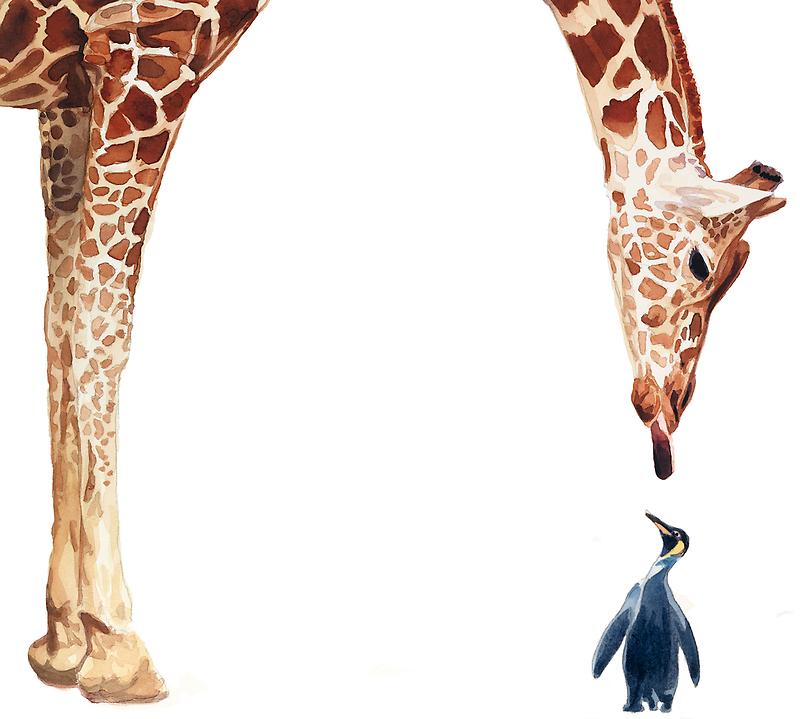 """Licker with Penguin"" Giraffe Watercolor by Paul Jackson"