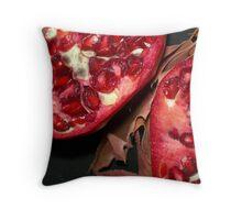 Pomegranate Series - 17 Throw Pillow
