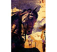 The King's Horse Photographic Print