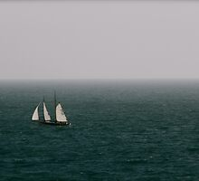 Blue Sea Sails by The  Republic Of Media