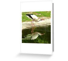 Drinking stork Greeting Card