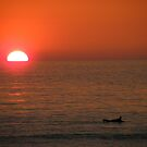 Cornwall: The Surfer and The Sunset by Rob Parsons