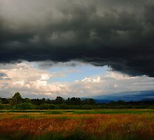 Approaching Storm by Olga Zvereva