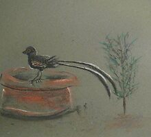 Long tailed bird by Jayde Nossiter