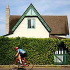 the cyclist and the hedge by KreddibleTrout