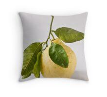 Citron/Cedro Throw Pillow