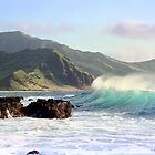 Spirit Wave Hawaii by kevin smith  skystudiohawaii