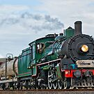 Steam Train 2 by Donna Rondeau