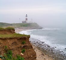 Montauk Point Lighthouse by Dandelion Dilluvio
