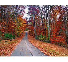 *MY FAVORITE COUNTRY ROAD* Photographic Print