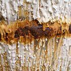 river of rust by yurablank