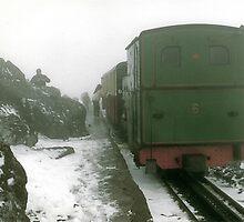 Train in the mist by Ian Ker