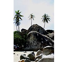 Big Boulders On Baths Beach Photographic Print