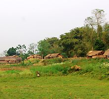 Mising tribe village, Assam, India by John Mitchell