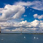 Charleston bridge by Slavi Barnev
