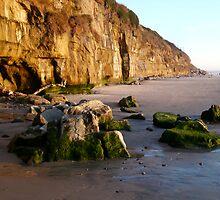 """Encinitas Beach Looking South"" by Tim&Paria Sauls"