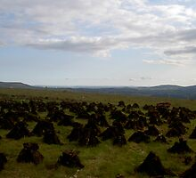 Peat Stacked to Dry. by Pat Duggan