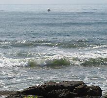 mooloolaba beach scene by rudledge