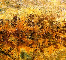 Hues of Gold by Kathie Nichols