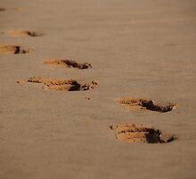 footsteps by steveault