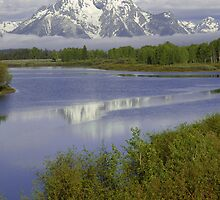 Fog Oxbow Bend by Luann wilslef
