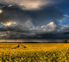Storm approaching by Jon Tait
