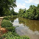 The C&amp;O Canal by Cora Wandel
