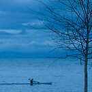 Paddler at Dusk by Werner Padarin