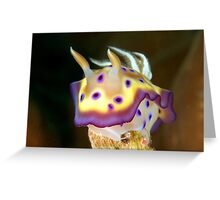 Kunes Chromodoris (Nudibranch) Greeting Card