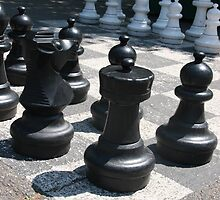 Large Chess Pieces in Geneva by arushton