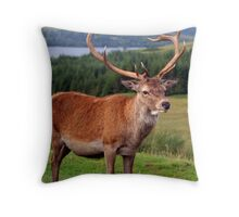 Stag - Scotland Throw Pillow