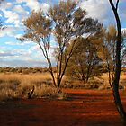 Outback Australia by Joy & Rob Penney