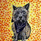 'Bandido' - Portrait of a Cairn Terrier by Alan Hogan