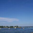 Seattle is so Bluetiful and green by WaleskaL