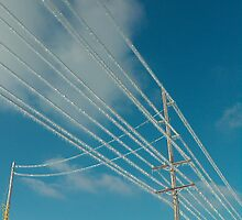 Icy Power Lines by sigtech